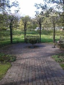 mindful walking place
